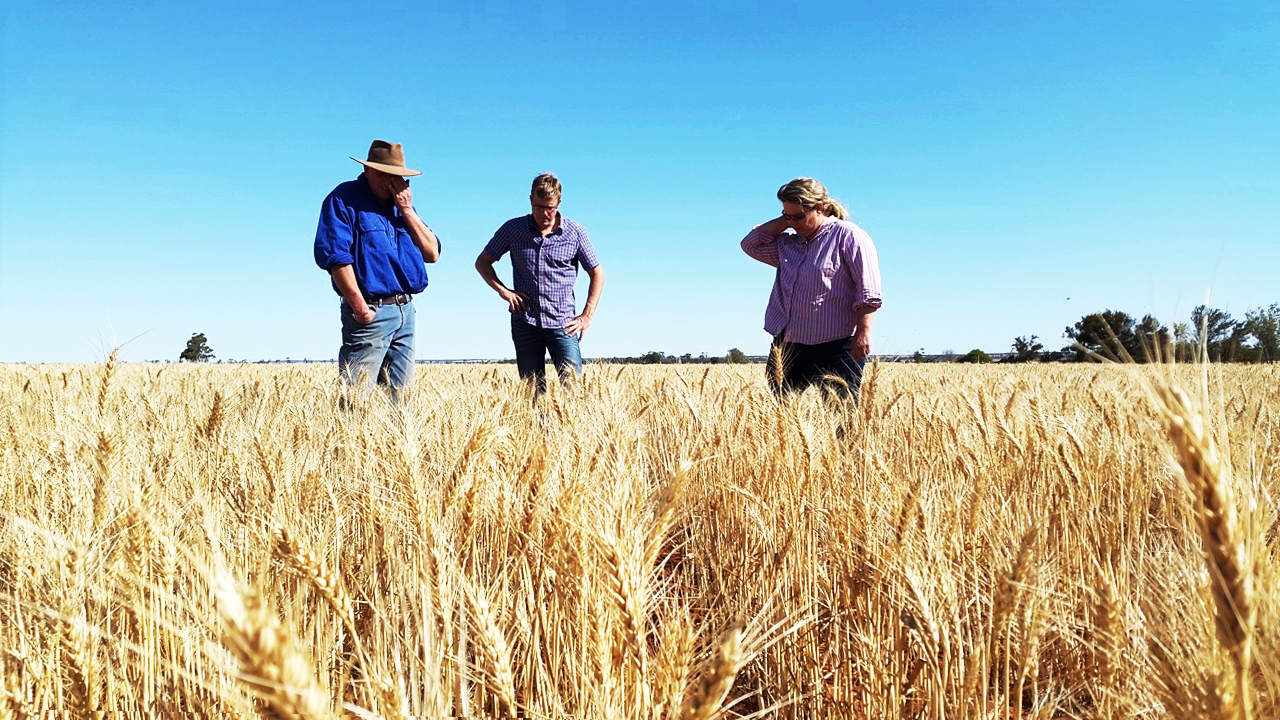 Soil Capital Carbon Program - People in a field